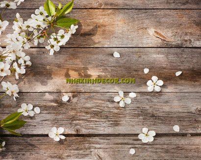 Tranh hoa F239
