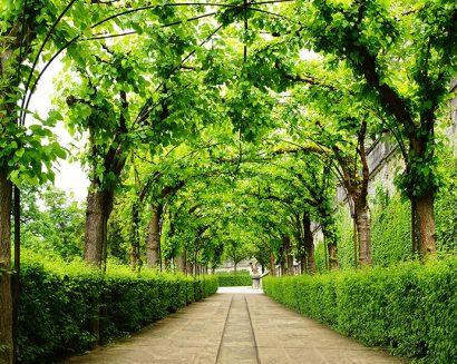Tranh Phong Cảnh N472