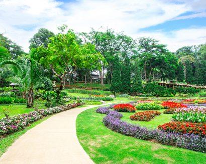 Tranh Phong Cảnh N492