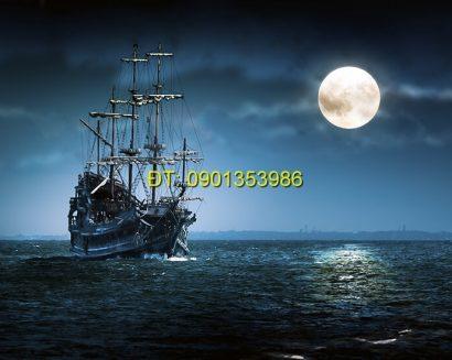 Tranh biển S12