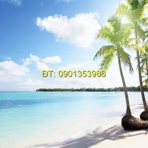 Tranh biển S122