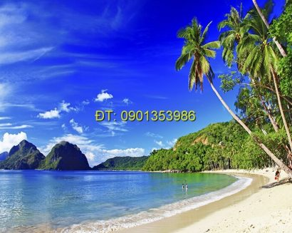 Tranh biển S129