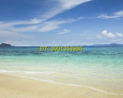 Tranh biển S130