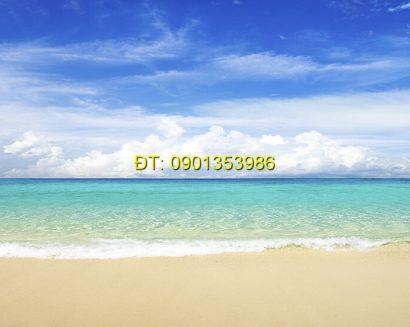 Tranh biển S136