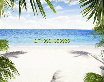 Tranh biển S138