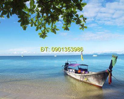 Tranh biển S141