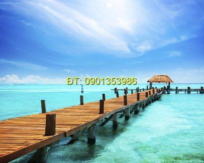 Tranh biển S143