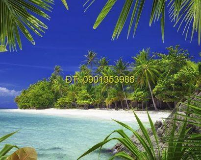 Tranh biển S148