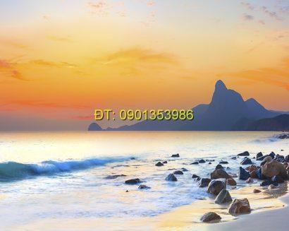 Tranh biển S149