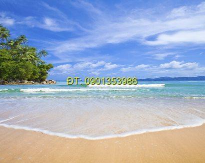 Tranh biển S154