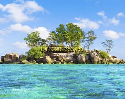 Tranh biển S156
