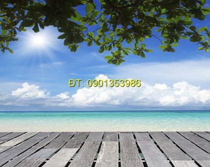 Tranh biển S163