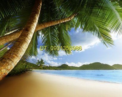 Tranh biển S164