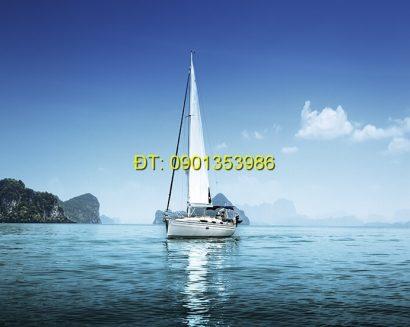 Tranh biển S167