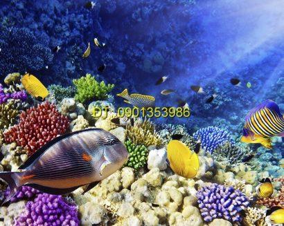 Tranh biển S168