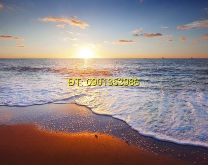 Tranh biển S169