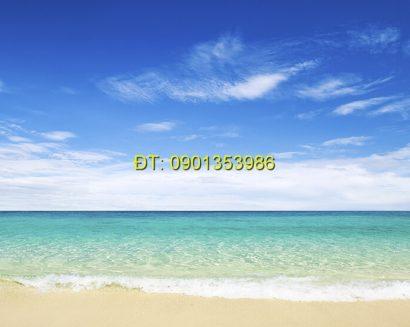 Tranh biển S173