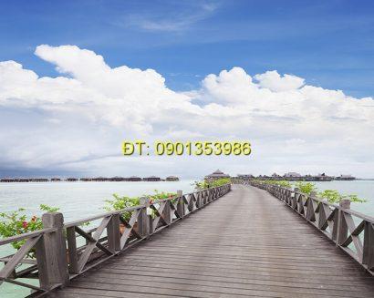 Tranh biển S174