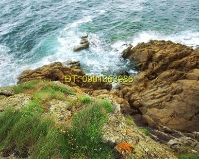 Tranh biển S18