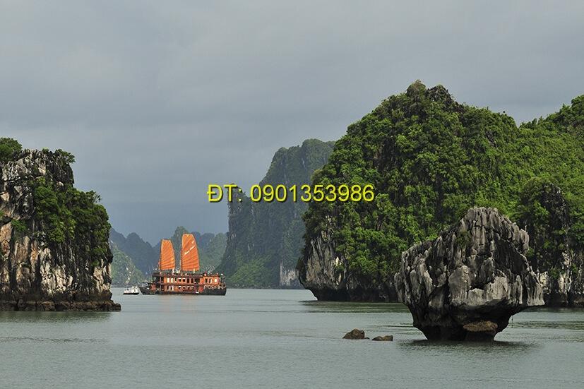 Tranh biển S186