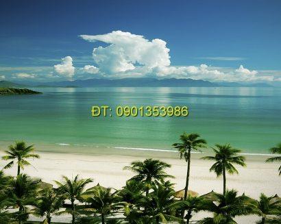 Tranh biển S201