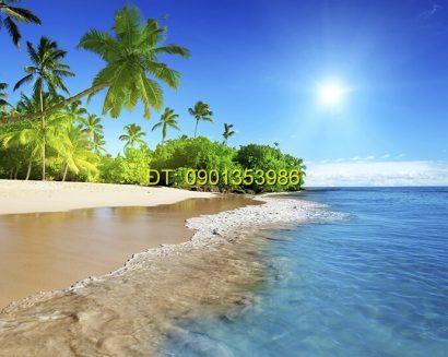 Tranh biển S213