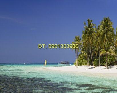 Tranh biển S25