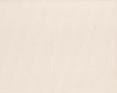 Giấy dán tường lily 36010-1